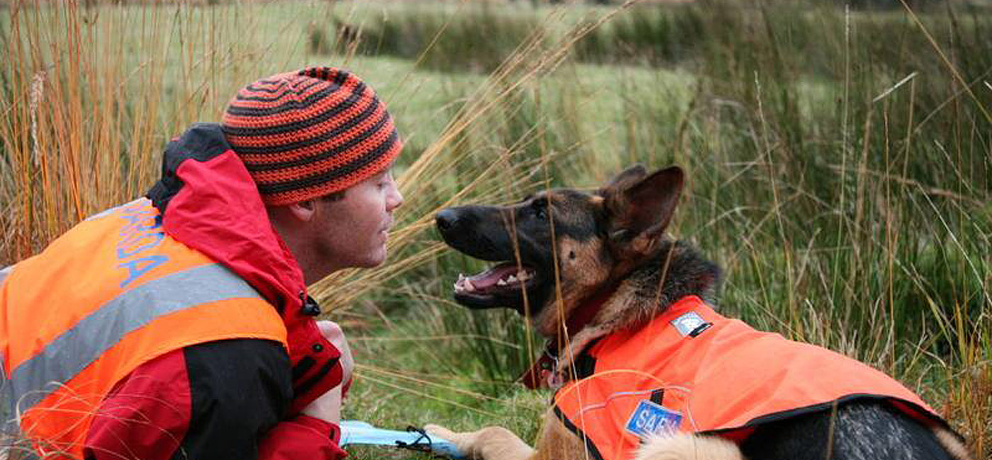 Sarda Ireland search dogs